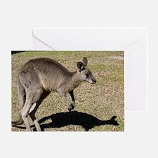 Kangaroo1 Greeting Card