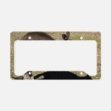 Kangaroo1 License Plate Holder