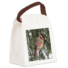 Card 69x70 Canvas Lunch Bag