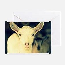 goat:  clotilde Greeting Card