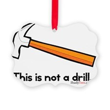 This is not a drill Picture Ornament
