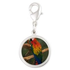 macaw Coaster Silver Round Charm