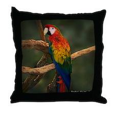 macaw Coaster Throw Pillow
