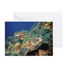 pair of sea turtles Greeting Card