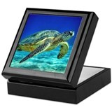 Green sea turtle Keepsake Boxes
