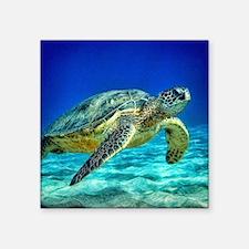 """sea turtle Square Sticker 3"""" x 3"""""""