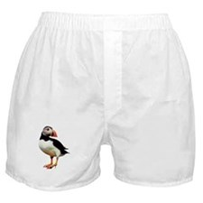 Puffin Wearing Heels Boxers