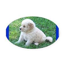 Golden Retriever Puppy Oval Car Magnet
