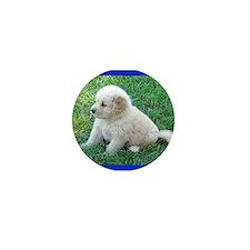 Golden Retriever Puppy Mini Button