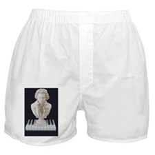 Beethoven Bust on Piano Keys -Mens Sh Boxer Shorts