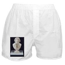 Beethoven Bust on Piano Keys-Womens Boxer Shorts