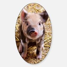 Piglet Decal