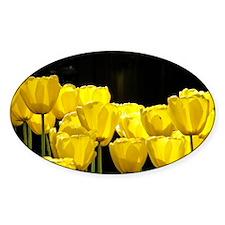 Yellow Tulips Decal