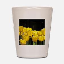 Yellow Tulips Shot Glass