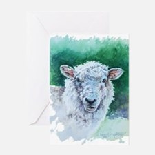 Sheep Merino New Zealand Greeting Card