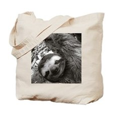 frame print Tote Bag