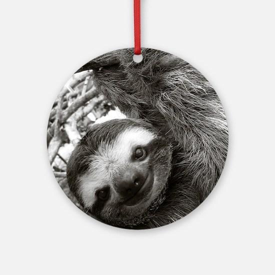 frame print Round Ornament