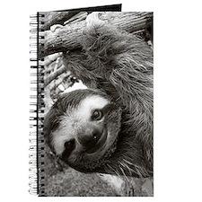frame print Journal