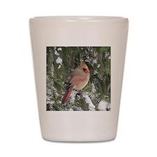 Female cardinal Shot Glass