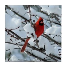 Snow Cardinal Tile Coaster