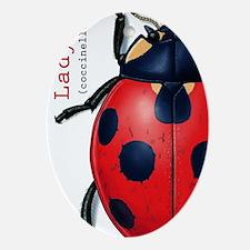 Ladybug Iphone 3 Ladybug Hard Case Oval Ornament