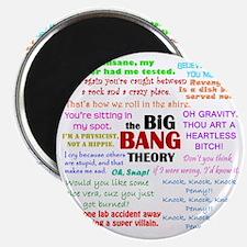 Big Bang Theory Quotes Magnet