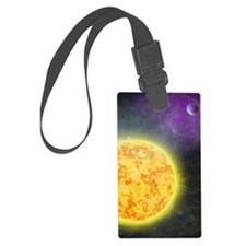 ts_nexus Luggage Tag