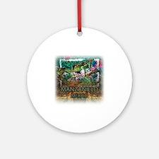 Iguana Manzanillo Mexico Round Ornament