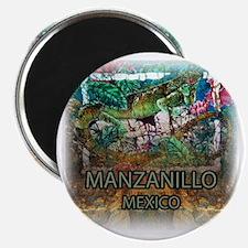Iguana Manzanillo Mexico Magnet