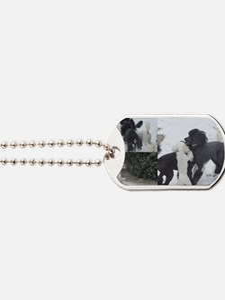 Texas Snow Poodles Dog Tags