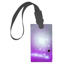 ps_incredible Luggage Tag