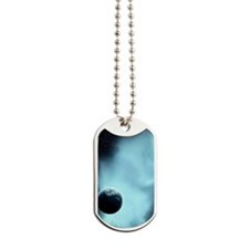 teibf_galaxy_s3_case_829_V_F Dog Tags