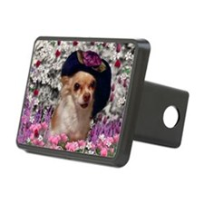 Chi Chi the Chihuahua in F Hitch Cover
