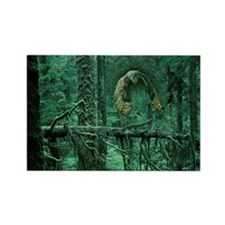 Green Woods Owl Rectangle Magnet