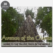 Founder's Tree Wide -  Avenue of the Giants Puzzle