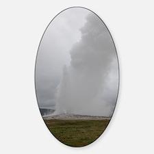 Old Faithful Geyser Yellowstone Nat Decal