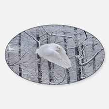 Snowy Owl, Praying Wings Sticker (Oval)