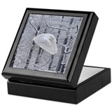 Snowy owl Square Keepsake Boxes
