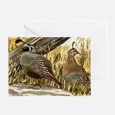 Quail in the grass Greeting Card