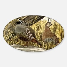 Quail in the grass Decal
