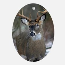 10 point buck Oval Ornament