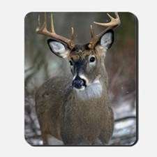 10 point buck Mousepad