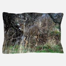 on the prowl Pillow Case