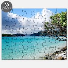 Cinnamon Bay, St. John VI Puzzle