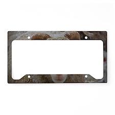 Snowy Ewe Headstudy License Plate Holder