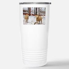 Ewes enjoying Leaves in Travel Mug