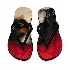 Tri-Color Cavalier King Charles Spaniel Flip Flops