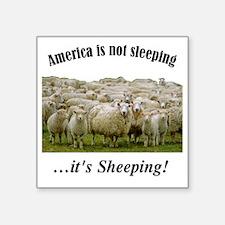 """....Sheeple! Square Sticker 3"""" x 3"""""""