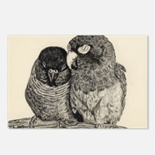 Conure Love Postcards (Package of 8)