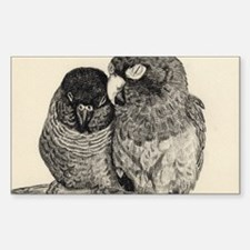 Conure Love Sticker (Rectangle)